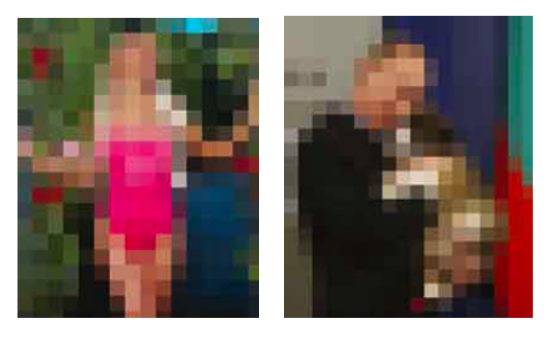 Pixelated img.png