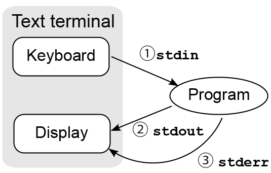 A graphical representation of the Terminal processes.