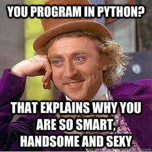 Python meme.jpg