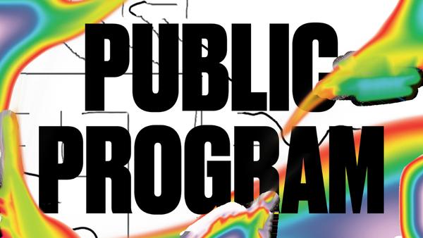 Public Program.png