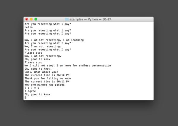 Chatbot terminal.png